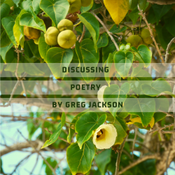Discussing Poetry by Greg Jackson